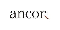 Анкор - кадровое агентство