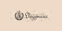 Музыкальная школа Elegymusic
